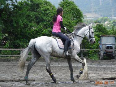 独語7 馬② 乗馬療法(AAT=アニマル・アシステッド・セラピー)